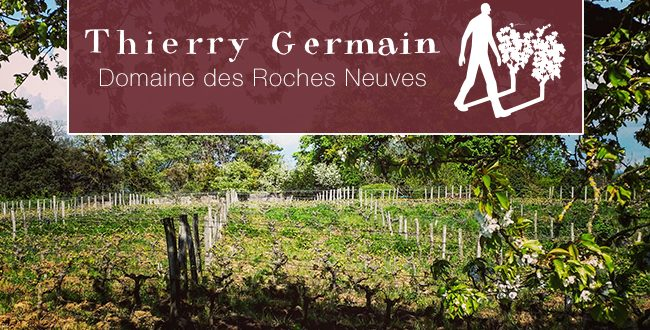 Thierry Germain, Domaine des Roches Nueves